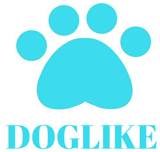 Doglike kutyaruha